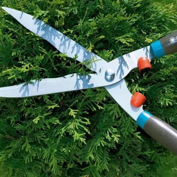 Ручные ножницы для живой изгороди