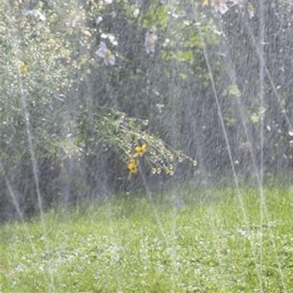 Шланг-дождеватель