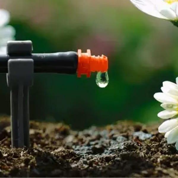 Системы микрокапельного полива