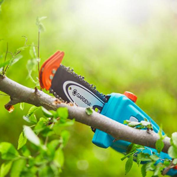 Сучкорезы для ветвей деревьев